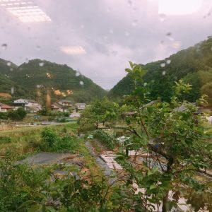 週末は雨ですね…
