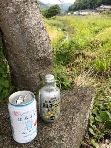 海田川にホタルのシーズン到来